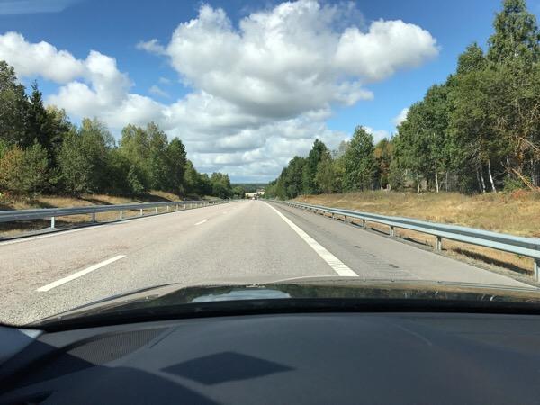スウェーデンドライブ