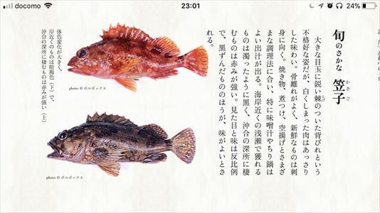 koyomi_3